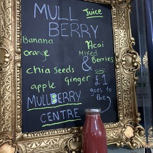 Kind Juice Mulberry Juice